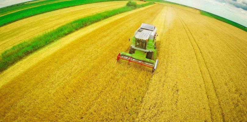 Agricoltura: in Emilia- Romagna aziende sempre più efficienti grazie a un investimento di 23,5 milioni di euro