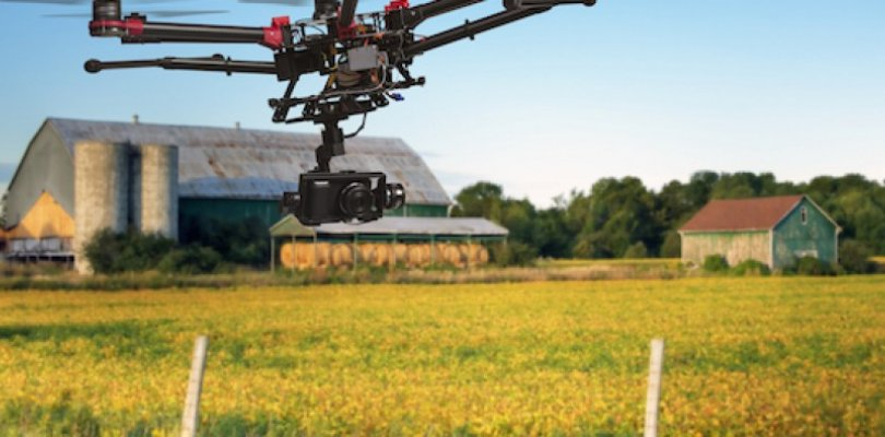 Agricoltura di precisione per ottimizzare risorse e produzione